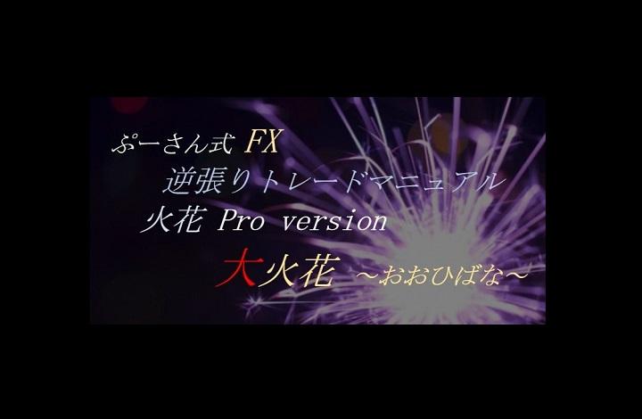 火花pro version 大火花