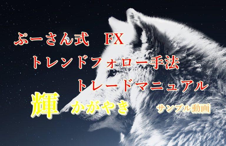 ぷーさん式FXトレンドフォロー手法トレードマニュアル輝 サンプル動画