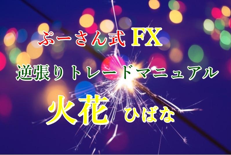ぷーさん式FX逆張りトレードマニュアル 火花 サンプル動画